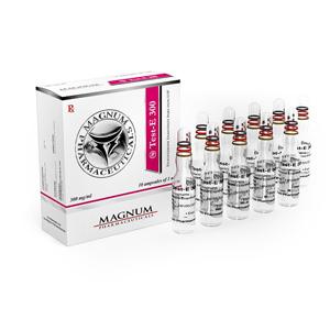 Comprarlo Enantato de testosterona: Magnum Test-E 300 Precio
